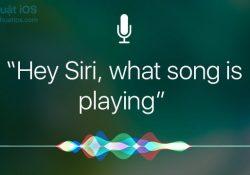 Cách tìm tên bài hát đang phát bằng Siri hoặc ứng dụng Shazam