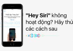 """""""Hey Siri"""" không hoạt động? Hãy thử các cách sau"""