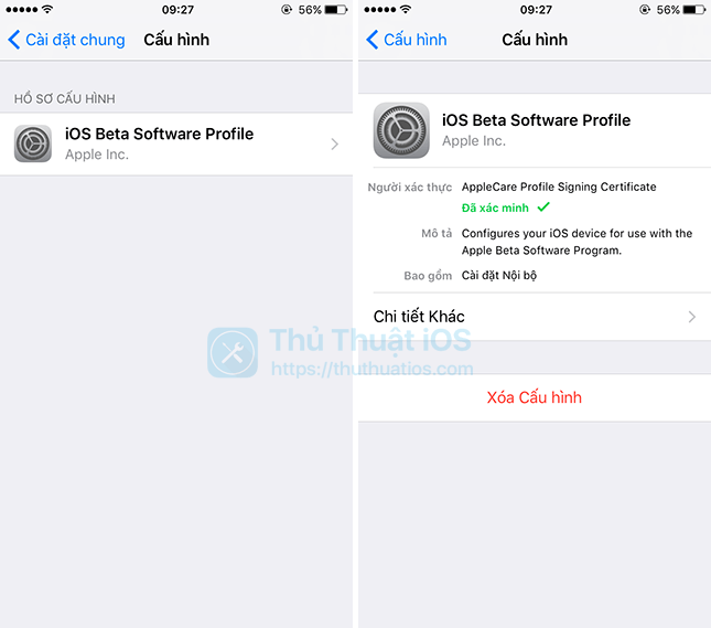 xoa beta-profile-tren iPhone